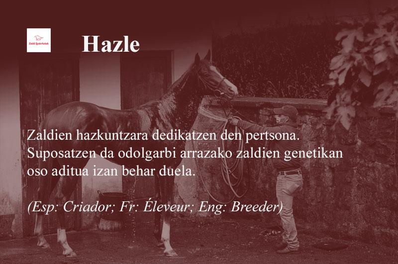 Hazle